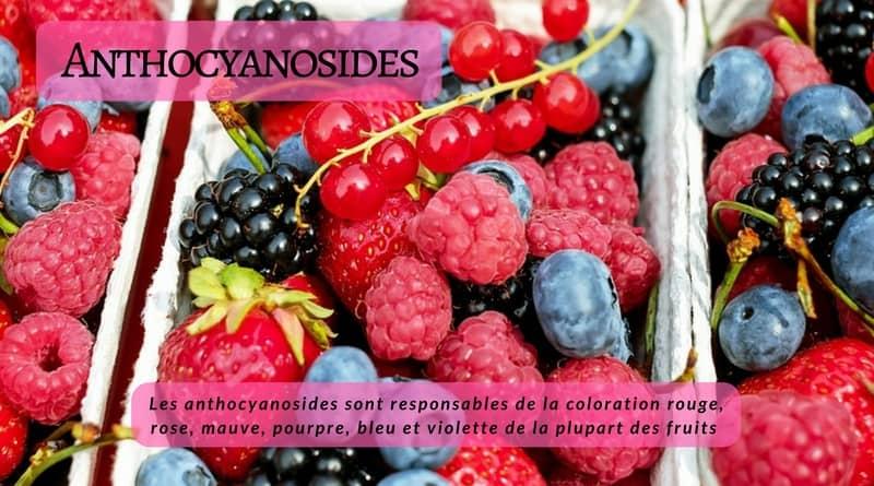 Anthocyanosides - PhytoMag